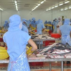Acci 7 - produit intéressant pour les travailleurs d'usine
